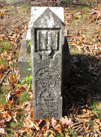 YOUNG, EVALINE - Randolph County, Arkansas | EVALINE YOUNG - Arkansas Gravestone Photos