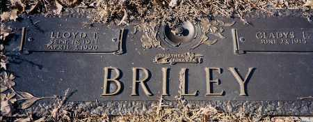 BRILEY, LLOYD - Saline County, Arkansas | LLOYD BRILEY - Arkansas Gravestone Photos