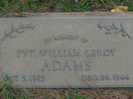 ADAMS, WILLIAM - Saline County, Arkansas | WILLIAM ADAMS - Arkansas Gravestone Photos