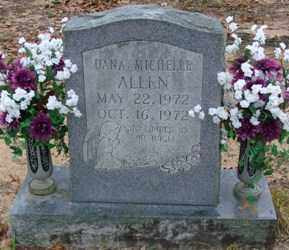 ALLEN, DANA MICHELLE - Saline County, Arkansas | DANA MICHELLE ALLEN - Arkansas Gravestone Photos