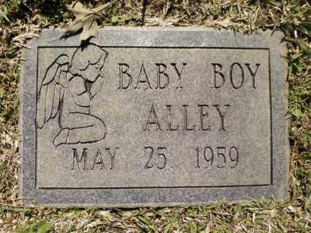 ALLEY, BABY BOY - Saline County, Arkansas | BABY BOY ALLEY - Arkansas Gravestone Photos
