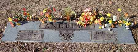 ANDREWS, ELZA F. - Saline County, Arkansas | ELZA F. ANDREWS - Arkansas Gravestone Photos