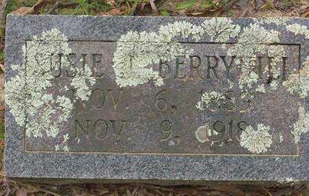 BERRYHILL, SUSIE J. - Saline County, Arkansas | SUSIE J. BERRYHILL - Arkansas Gravestone Photos