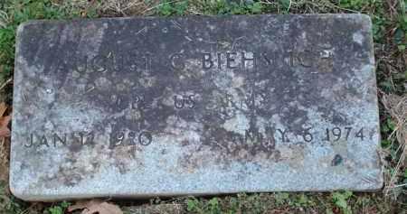 BIEHSLICH (VETERAN), AUGUST G - Saline County, Arkansas | AUGUST G BIEHSLICH (VETERAN) - Arkansas Gravestone Photos