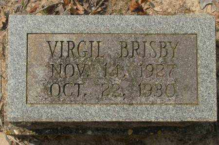 BRISBY, VIRGIL - Saline County, Arkansas | VIRGIL BRISBY - Arkansas Gravestone Photos