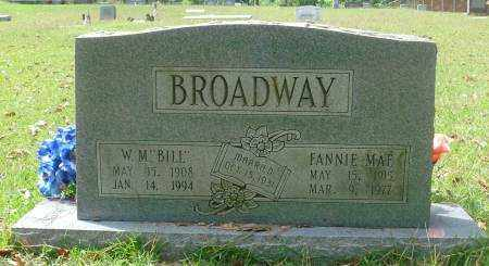 BROADWAY, W.M. - Saline County, Arkansas | W.M. BROADWAY - Arkansas Gravestone Photos