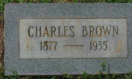 BROWN, CHARLES - Saline County, Arkansas | CHARLES BROWN - Arkansas Gravestone Photos