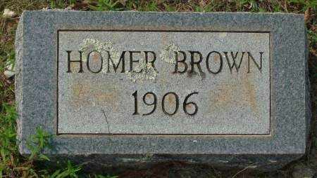 BROWN, HOMER - Saline County, Arkansas | HOMER BROWN - Arkansas Gravestone Photos