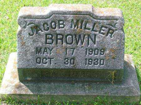 BROWN, JACOB - Saline County, Arkansas | JACOB BROWN - Arkansas Gravestone Photos