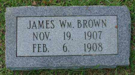 BROWN, JAMES WILLIAM - Saline County, Arkansas | JAMES WILLIAM BROWN - Arkansas Gravestone Photos