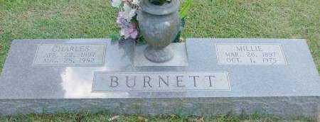 BURNETT, MILLIE - Saline County, Arkansas | MILLIE BURNETT - Arkansas Gravestone Photos