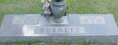 BURNETT, CHARLES - Saline County, Arkansas | CHARLES BURNETT - Arkansas Gravestone Photos