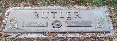 BUTLER, JAMES L. - Saline County, Arkansas | JAMES L. BUTLER - Arkansas Gravestone Photos