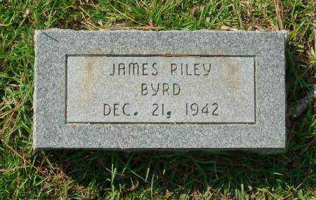 BYRD, JAMES RILEY - Saline County, Arkansas | JAMES RILEY BYRD - Arkansas Gravestone Photos
