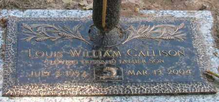 CALLISON, LOUIS WILLIAM - Saline County, Arkansas | LOUIS WILLIAM CALLISON - Arkansas Gravestone Photos