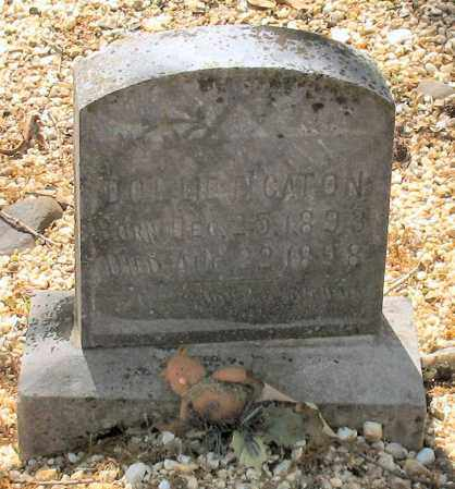 CATON, DOLLIE F. - Saline County, Arkansas | DOLLIE F. CATON - Arkansas Gravestone Photos