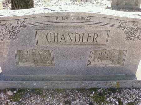 CHANDLER, JULIA G. - Saline County, Arkansas | JULIA G. CHANDLER - Arkansas Gravestone Photos