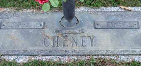 CHENEY, DELIA C. - Saline County, Arkansas | DELIA C. CHENEY - Arkansas Gravestone Photos