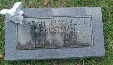CHRESTMAN, SARAH ELIZABETH - Saline County, Arkansas | SARAH ELIZABETH CHRESTMAN - Arkansas Gravestone Photos