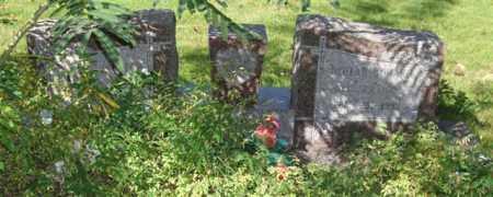 COLEBAR, BEULAH - Saline County, Arkansas | BEULAH COLEBAR - Arkansas Gravestone Photos