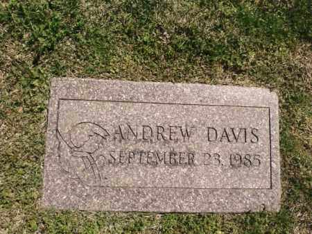 DAVIS, ANDREW - Saline County, Arkansas | ANDREW DAVIS - Arkansas Gravestone Photos