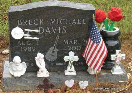 DAVIS, BRECK MICHAEL - Saline County, Arkansas | BRECK MICHAEL DAVIS - Arkansas Gravestone Photos