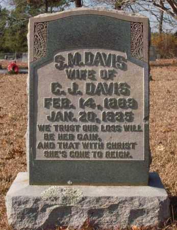 DAVIS, S.M. - Saline County, Arkansas | S.M. DAVIS - Arkansas Gravestone Photos
