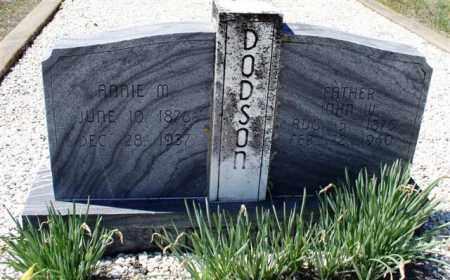 DODSON, JOHN W. - Saline County, Arkansas | JOHN W. DODSON - Arkansas Gravestone Photos