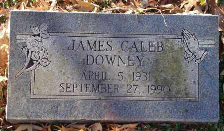 DOWNEY, JAMES CALEB - Saline County, Arkansas | JAMES CALEB DOWNEY - Arkansas Gravestone Photos