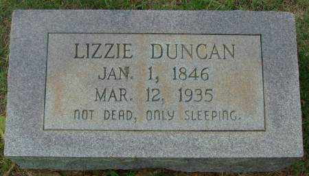 DUNCAN, LIZZIE - Saline County, Arkansas | LIZZIE DUNCAN - Arkansas Gravestone Photos