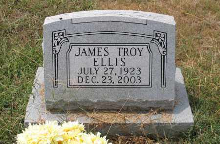 ELLIS, JAMES TROY - Saline County, Arkansas | JAMES TROY ELLIS - Arkansas Gravestone Photos