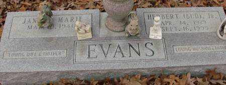EVANS, JR., HERBERT - Saline County, Arkansas | HERBERT EVANS, JR. - Arkansas Gravestone Photos