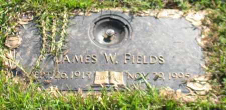 FIELDS, JAMES W. - Saline County, Arkansas | JAMES W. FIELDS - Arkansas Gravestone Photos