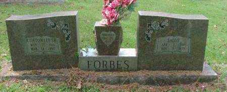 FORBES, SALLIE - Saline County, Arkansas | SALLIE FORBES - Arkansas Gravestone Photos
