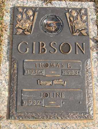 GIBSON, THOMAS E. - Saline County, Arkansas | THOMAS E. GIBSON - Arkansas Gravestone Photos