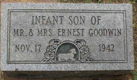 GOODWIN, INFANT SON - Saline County, Arkansas | INFANT SON GOODWIN - Arkansas Gravestone Photos