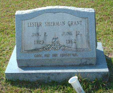 GRANT, LESTER SHERMAN - Saline County, Arkansas   LESTER SHERMAN GRANT - Arkansas Gravestone Photos