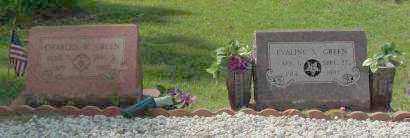 GREEN, CHARLES W. - Saline County, Arkansas | CHARLES W. GREEN - Arkansas Gravestone Photos