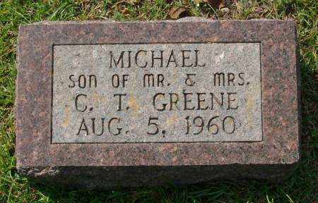 GREENE, MICHAEL - Saline County, Arkansas | MICHAEL GREENE - Arkansas Gravestone Photos