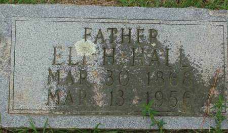HALE, ELI H. - Saline County, Arkansas | ELI H. HALE - Arkansas Gravestone Photos