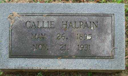 HALPAIN, CALLIE - Saline County, Arkansas | CALLIE HALPAIN - Arkansas Gravestone Photos