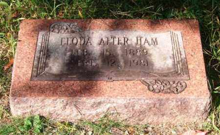 HAM, ELODA - Saline County, Arkansas | ELODA HAM - Arkansas Gravestone Photos