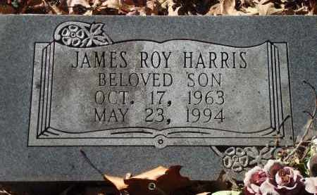 HARRIS, JAMES ROY - Saline County, Arkansas | JAMES ROY HARRIS - Arkansas Gravestone Photos