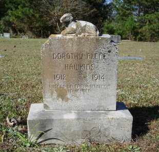 HAWKINS, DOROTHY ALENE - Saline County, Arkansas | DOROTHY ALENE HAWKINS - Arkansas Gravestone Photos
