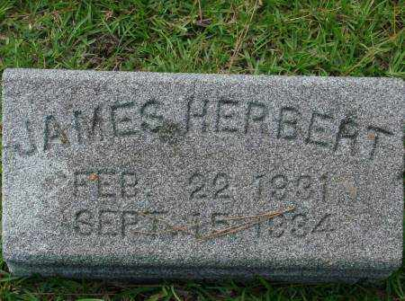 HERBERT, JAMES - Saline County, Arkansas | JAMES HERBERT - Arkansas Gravestone Photos