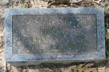 HICKS, JOSEPH SEBERT - Saline County, Arkansas | JOSEPH SEBERT HICKS - Arkansas Gravestone Photos