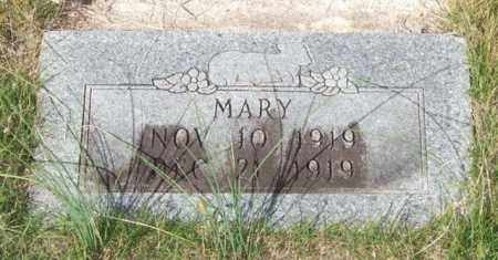 HICKS, MARY - Saline County, Arkansas | MARY HICKS - Arkansas Gravestone Photos