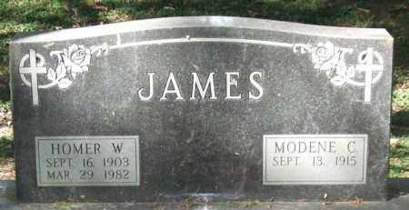 JAMES, HOMER W. - Saline County, Arkansas | HOMER W. JAMES - Arkansas Gravestone Photos