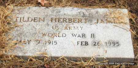 JAMES (VETERAN WWII), TILDEN HERBERT - Saline County, Arkansas | TILDEN HERBERT JAMES (VETERAN WWII) - Arkansas Gravestone Photos