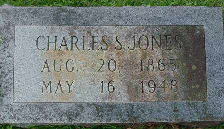 JONES, CHARLES - Saline County, Arkansas | CHARLES JONES - Arkansas Gravestone Photos